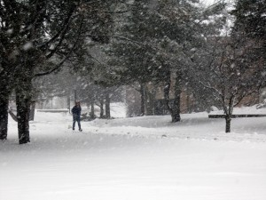 Nemo's Winter Wonderland at Lakeland College