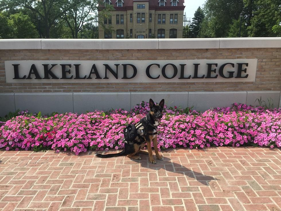 Duke+the+service+dog+enjoys+one+of+his+first+days+on+campus+earlier+this+semester.