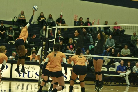 Women's volleyball team clinches home game against Aurora University