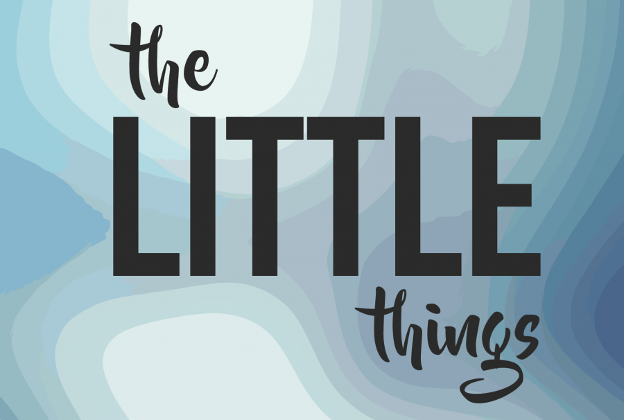 The+Little+Things%3A+Student+Tutors